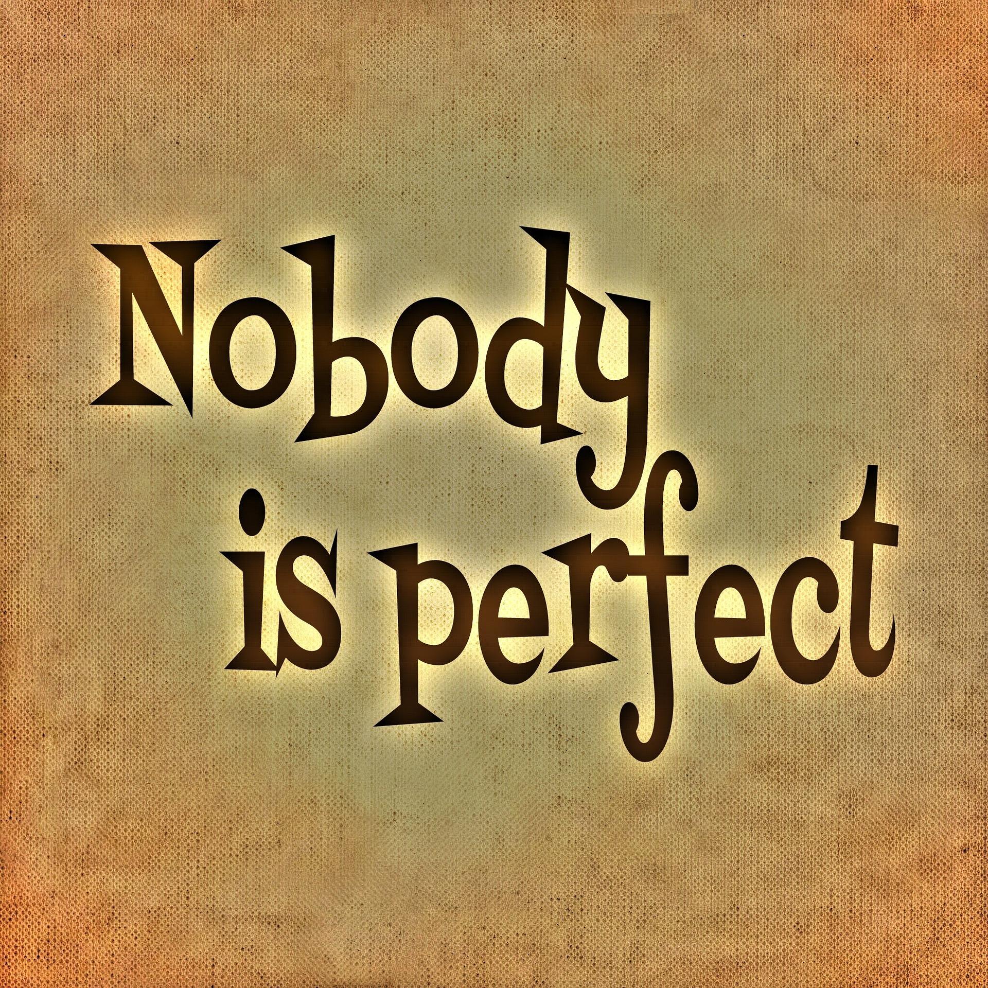 La Perfezione non Esiste